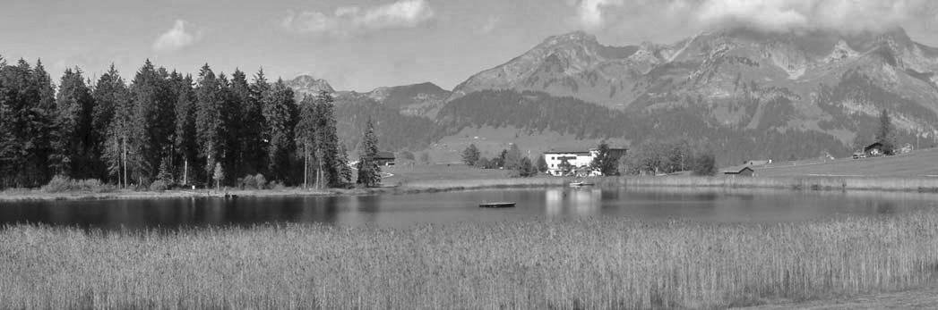 klanghaus_saiten_2