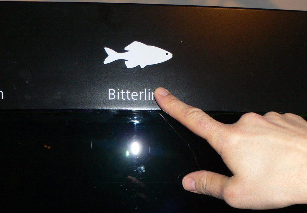 bitterli2