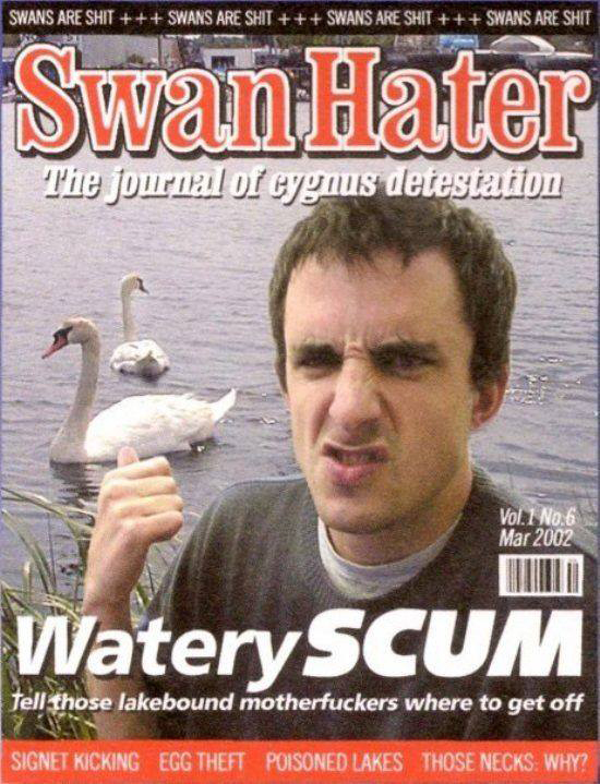 swan hater