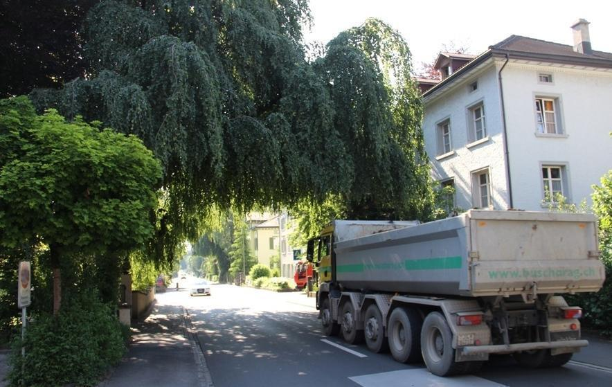 Bild: rheintaler.ch