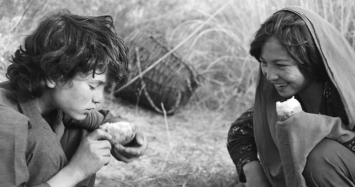 Bilder: trigon film